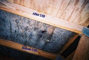 A H Dib Performs Mold Remediation Faster And More Completely Than Mechanical Abrasion Dry Ice Blasting Does Not Require Toxic Chemicals Create